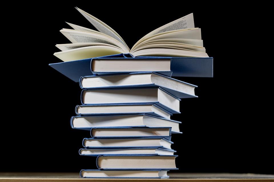 RefoRC Book Award 2020: Longlist Online